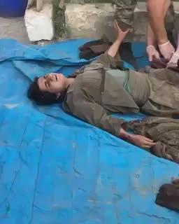 Canlı Ele Geçirilen Pkk'lı Kadın Terörist